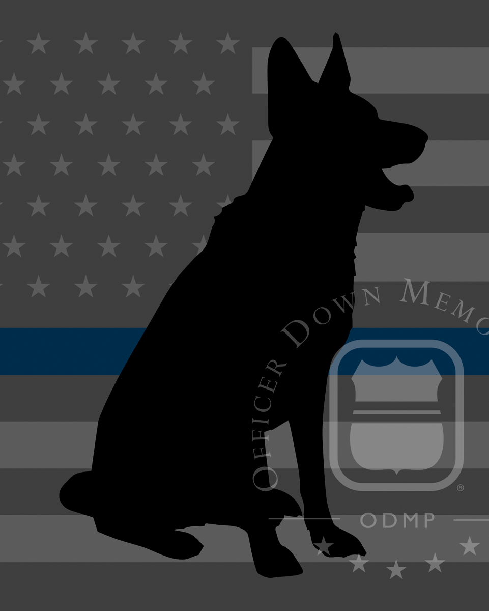 K9 Rondo | Vallejo Police Department, California